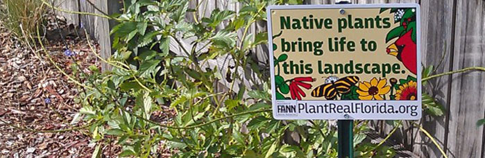 holder - Plant Real Florida Bring Your Landscape To Life With Native Plants