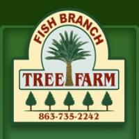 Florida association of native nurseries fann for Fish branch tree farm