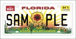 This article was originally published in the 2011 Guide for Real Florida Gardeners, sponsored by the Florida Wildflower Foundation. The Foundation is funded in large part by sales of the Florida wildflower license plate, and is the only significant consistent source of funding for native plant education, planting and research.